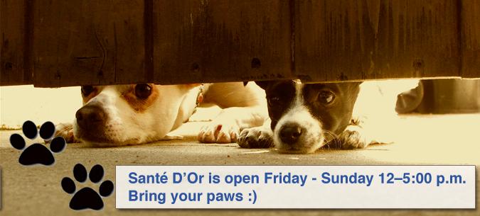 Visit Sante DOr 12-5 Fri thru Sun